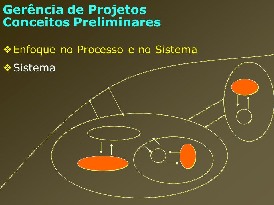 Planejamento, Execução e Controle (cont.) processos interligados para o gerenciamento Execução Projeto: execução de um conjunto de ações de forma coordenada, por uma organização provisória, que utiliza insumos, para em um dado prazo, alcançar um objetivo determinado.