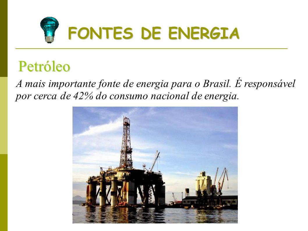 FONTES DE ENERGIA Petróleo A mais importante fonte de energia para o Brasil. É responsável por cerca de 42% do consumo nacional de energia.