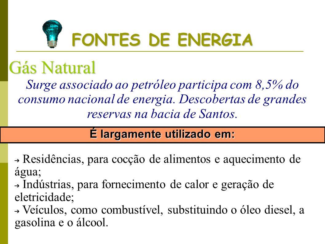 FONTES DE ENERGIA Gás Natural Surge associado ao petróleo participa com 8,5% do consumo nacional de energia. Descobertas de grandes reservas na bacia