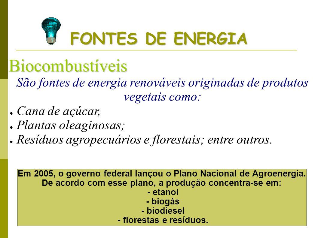 FONTES DE ENERGIA Biocombustíveis São fontes de energia renováveis originadas de produtos vegetais como: Cana de açúcar, Plantas oleaginosas; Resíduos