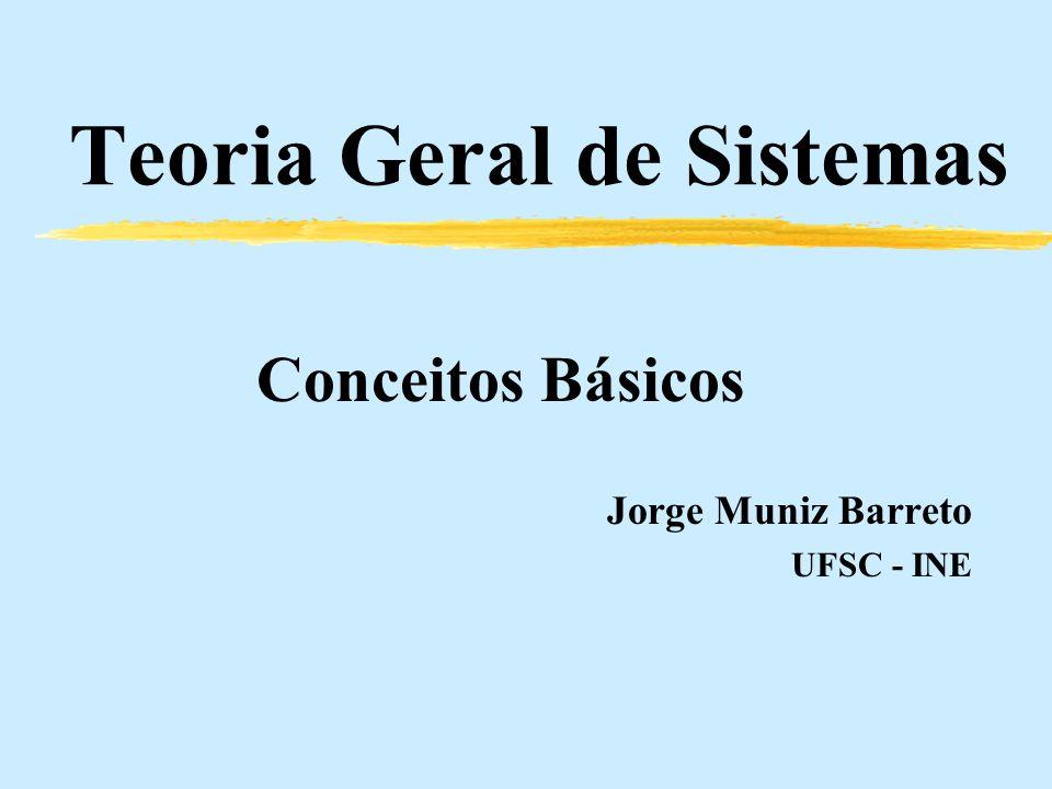 Teoria Geral de Sistemas Conceitos Básicos Jorge Muniz Barreto UFSC - INE