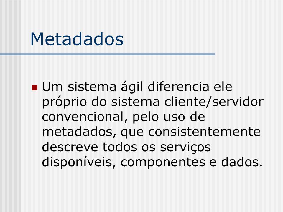 Metadados Um sistema ágil diferencia ele próprio do sistema cliente/servidor convencional, pelo uso de metadados, que consistentemente descreve todos