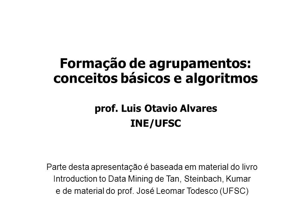 Formação de agrupamentos: conceitos básicos e algoritmos prof. Luis Otavio Alvares INE/UFSC Parte desta apresentação é baseada em material do livro In
