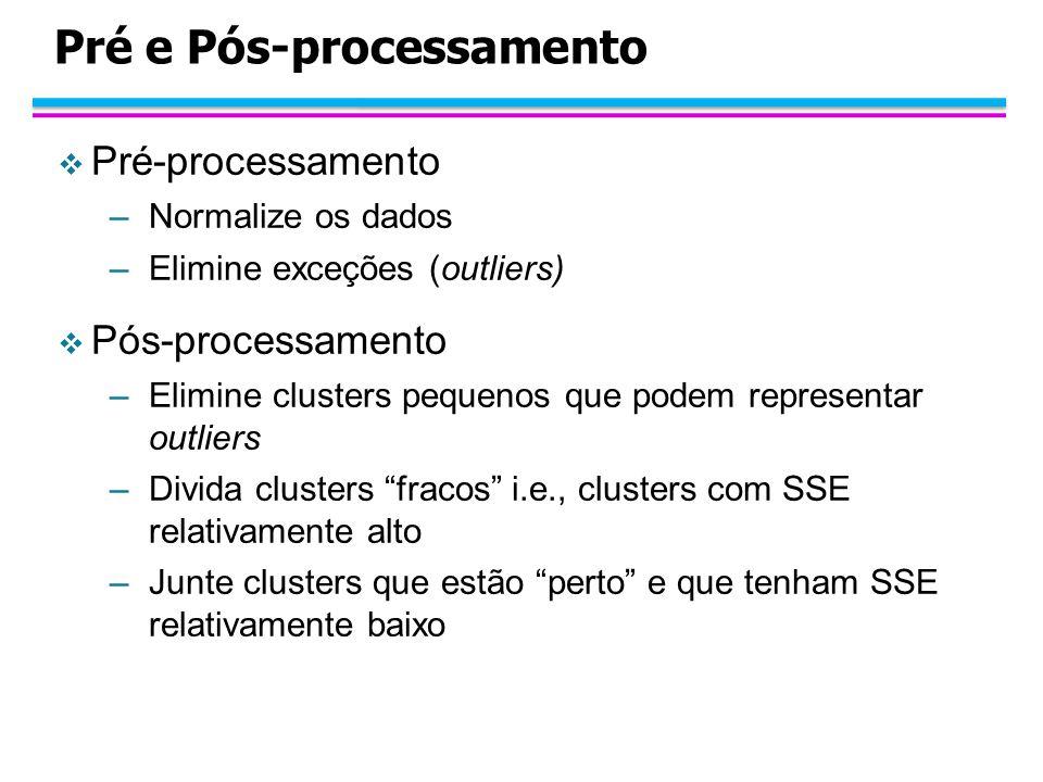 Pré e Pós-processamento Pré-processamento –Normalize os dados –Elimine exceções (outliers) Pós-processamento –Elimine clusters pequenos que podem repr