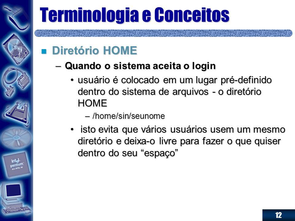 12 Terminologia e Conceitos n Diretório HOME –Quando o sistema aceita o login usuário é colocado em um lugar pré-definido dentro do sistema de arquivo