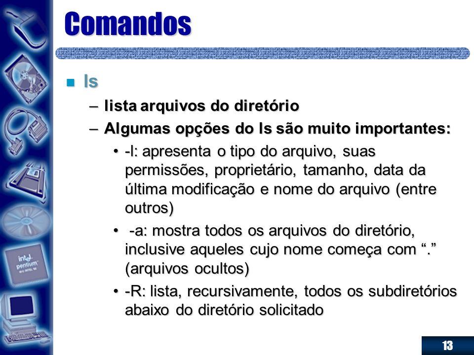 13 Comandos n ls –lista arquivos do diretório –Algumas opções do ls são muito importantes: -l: apresenta o tipo do arquivo, suas permissões, proprietá