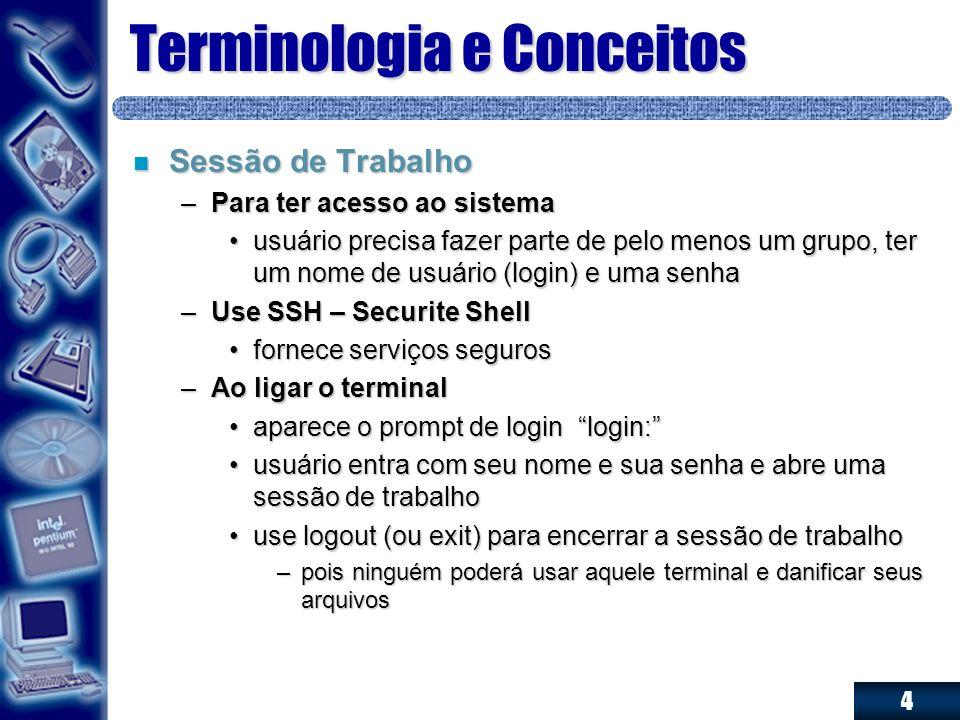 4 Terminologia e Conceitos n Sessão de Trabalho –Para ter acesso ao sistema usuário precisa fazer parte de pelo menos um grupo, ter um nome de usuário