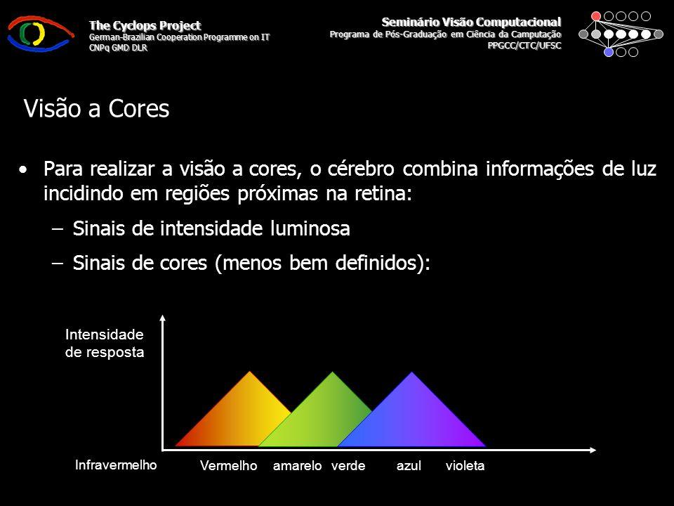 Seminário Visão Computacional Programa de Pós-Graduação em Ciência da Camputação PPGCC/CTC/UFSC The Cyclops Project German-Brazilian Cooperation Programme on IT CNPq GMD DLR Visão a Cores Que cor você está enxergando
