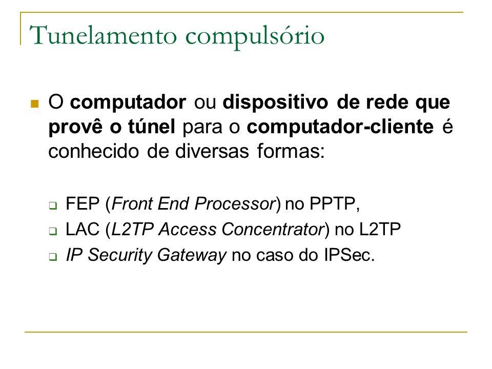 O computador ou dispositivo de rede que provê o túnel para o computador-cliente é conhecido de diversas formas: FEP (Front End Processor) no PPTP, LAC