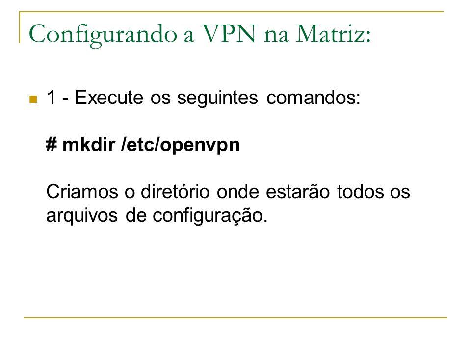 Configurando a VPN na Matriz: 1 - Execute os seguintes comandos: # mkdir /etc/openvpn Criamos o diretório onde estarão todos os arquivos de configuraç