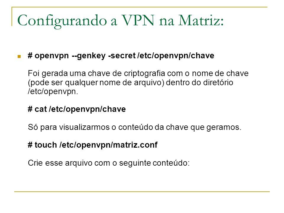 Configurando a VPN na Matriz: # openvpn --genkey -secret /etc/openvpn/chave Foi gerada uma chave de criptografia com o nome de chave (pode ser qualque