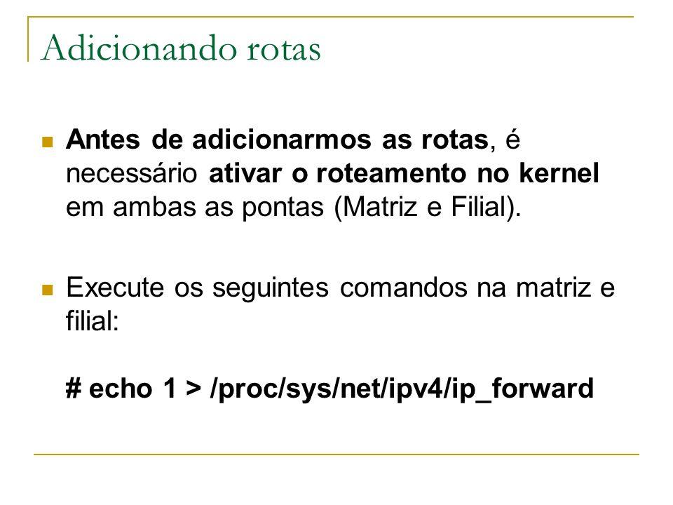 Adicionando rotas Antes de adicionarmos as rotas, é necessário ativar o roteamento no kernel em ambas as pontas (Matriz e Filial). Execute os seguinte