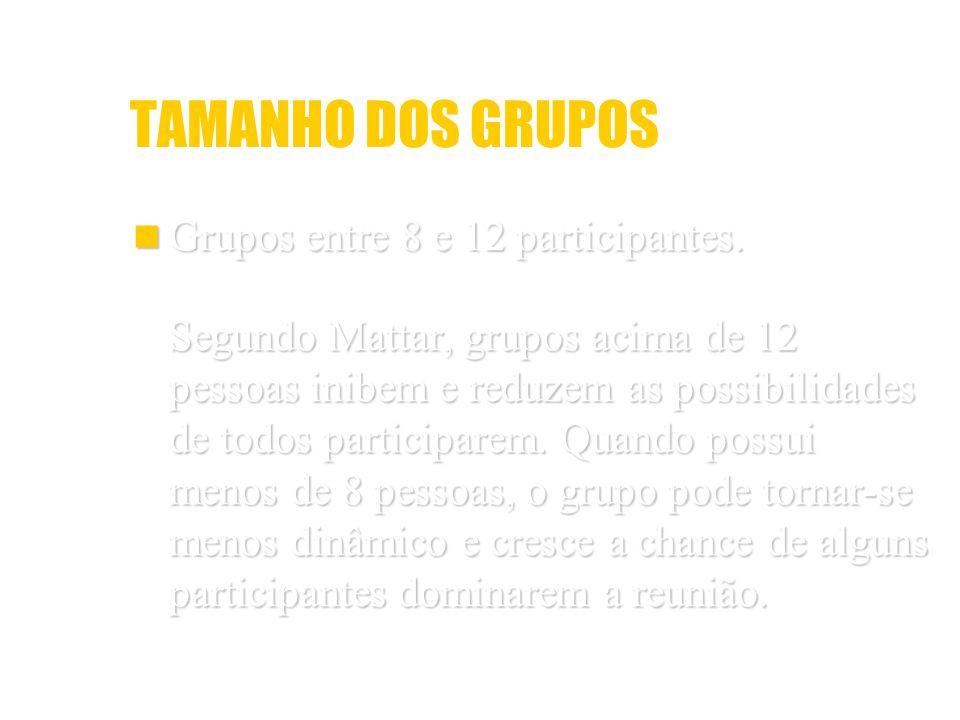 TAMANHO DOS GRUPOS Grupos entre 8 e 12 participantes. Grupos entre 8 e 12 participantes. Segundo Mattar, grupos acima de 12 pessoas inibem e reduzem a
