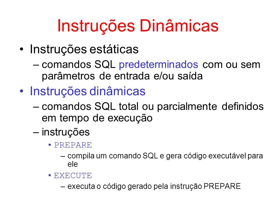 Instruções Dinâmicas Instruções estáticas –comandos SQL predeterminados com ou sem parâmetros de entrada e/ou saída Instruções dinâmicas –comandos SQL