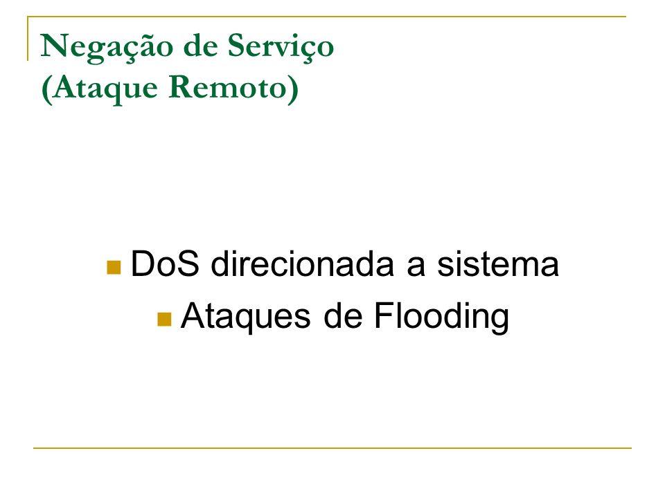 Negação de Serviço (Ataque Remoto) DoS direcionada a sistema Ataques de Flooding