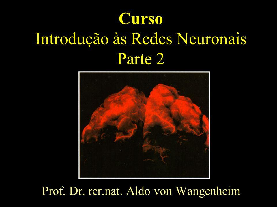 Curso Introdução às Redes Neuronais Parte 2 Prof. Dr. rer.nat. Aldo von Wangenheim