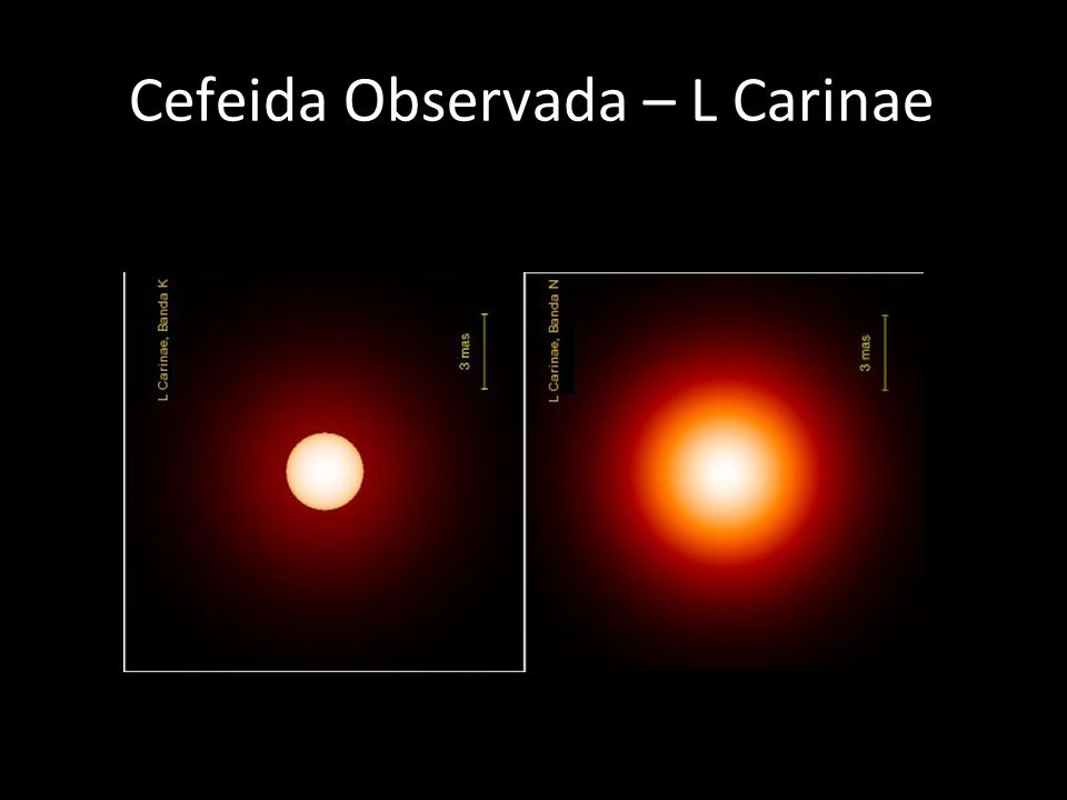 Cefeida Observada – L Carinae