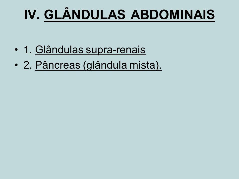 IV. GLÂNDULAS ABDOMINAIS 1. Glândulas supra-renais 2. Pâncreas (glândula mista).