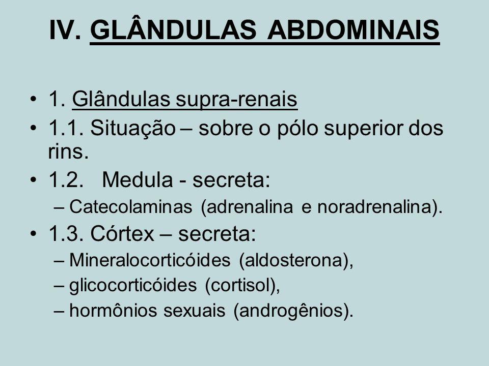 IV. GLÂNDULAS ABDOMINAIS 1. Glândulas supra-renais 1.1. Situação – sobre o pólo superior dos rins. 1.2. Medula - secreta: –Catecolaminas (adrenalina e