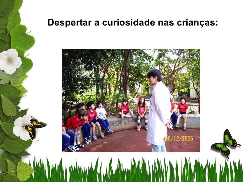 Despertar a curiosidade nas crianças: