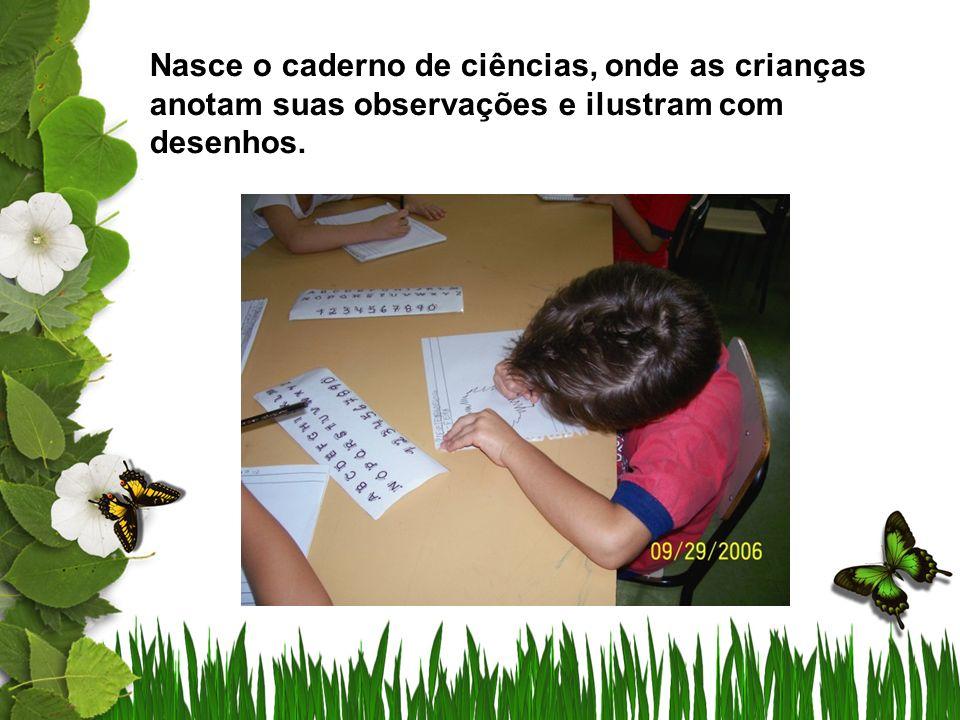 Nasce o caderno de ciências, onde as crianças anotam suas observações e ilustram com desenhos.