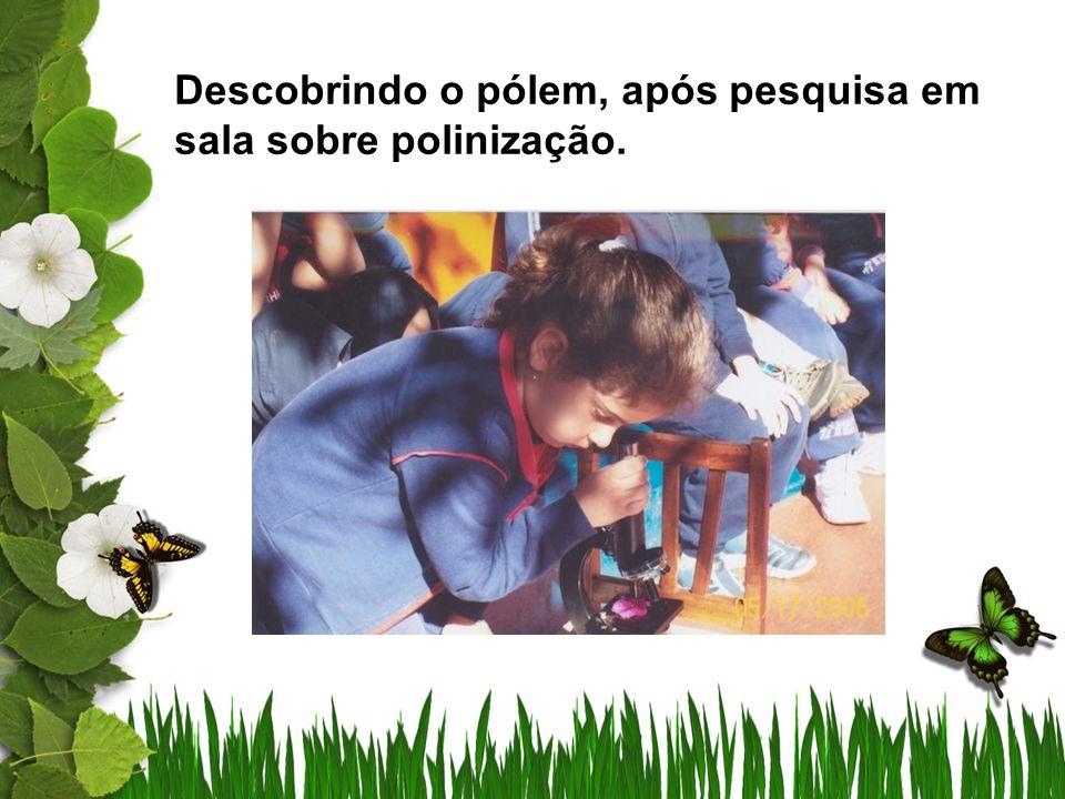 Propiciar às crianças atividades de pesquisa, pois a comparação entre os fatos observados e ocorrências, gera maior aprendizado.