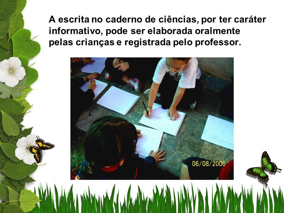 A cada observação, elaboramos textos no qual as crianças relatam sobre as diferenças na mangueira.