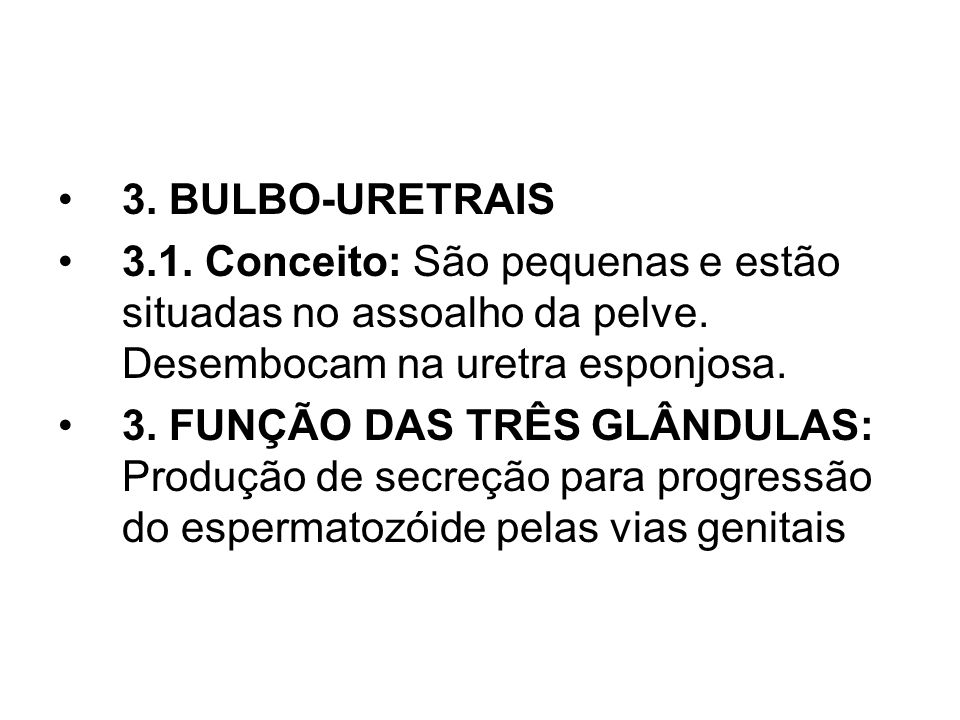 3.BULBO-URETRAIS 3.1. Conceito: São pequenas e estão situadas no assoalho da pelve.