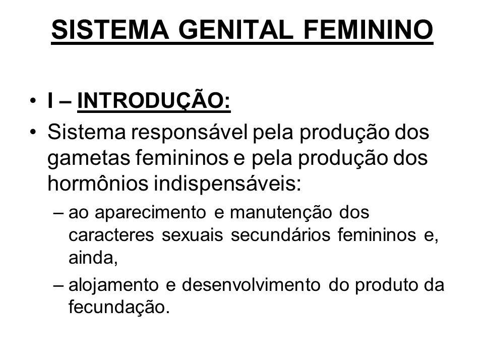 SISTEMA GENITAL FEMININO I – INTRODUÇÃO: Sistema responsável pela produção dos gametas femininos e pela produção dos hormônios indispensáveis: –ao apa