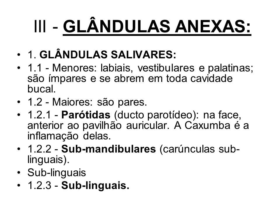 III - GLÂNDULAS ANEXAS: 1.