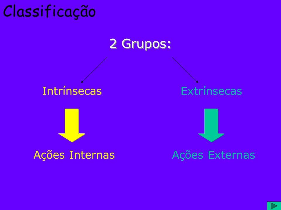 Classificação 2 Grupos: IntrínsecasExtrínsecas Ações InternasAções Externas