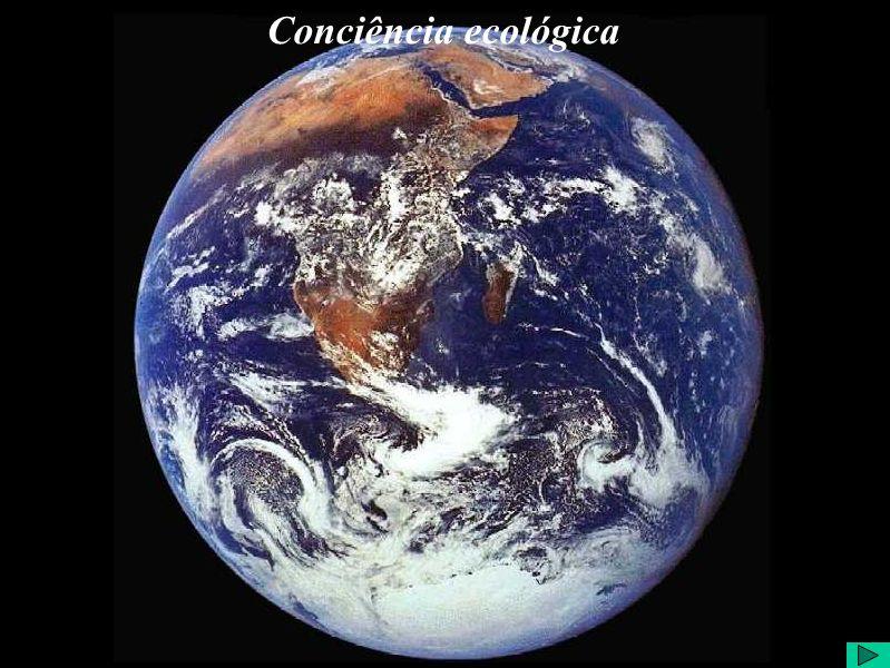 Conciência ecológica