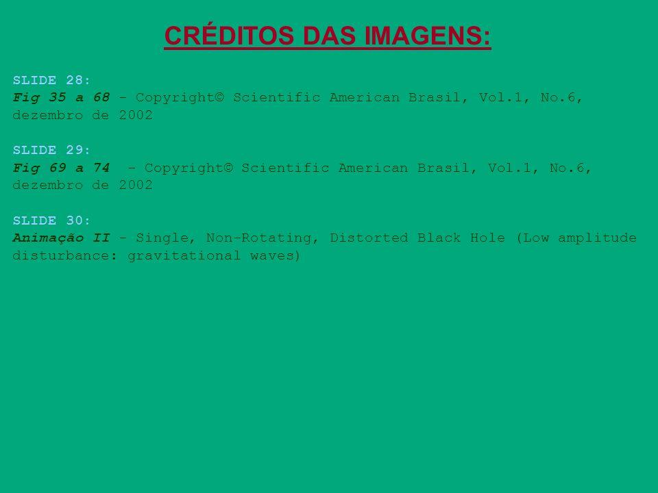 CRÉDITOS DAS IMAGENS: SLIDE 28: Fig 35 a 68 - Copyright© Scientific American Brasil, Vol.1, No.6, dezembro de 2002 SLIDE 29: Fig 69 a 74 - Copyright©