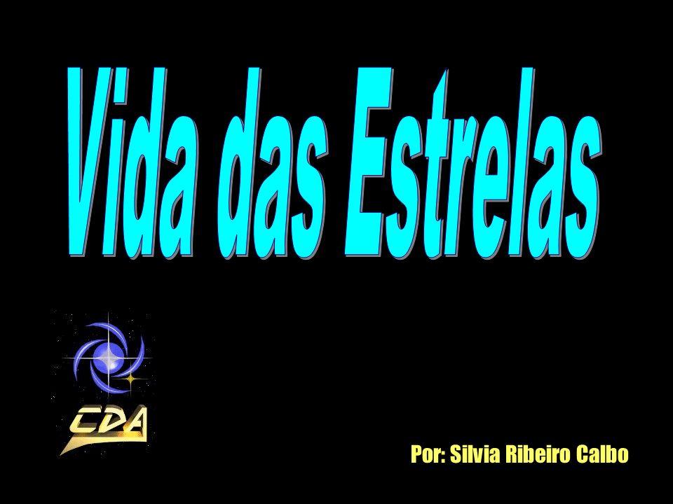 Por: Silvia Ribeiro Calbo