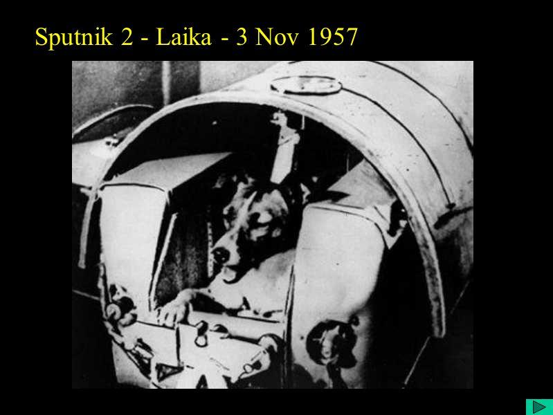 Sputnik 2 - Laika - 3 Nov 1957