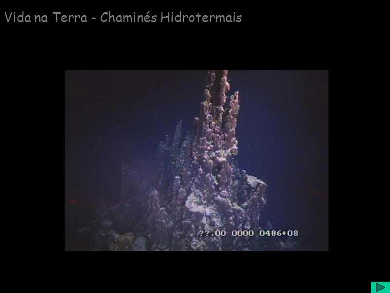 Vida na Terra - Chaminés Hidrotermais
