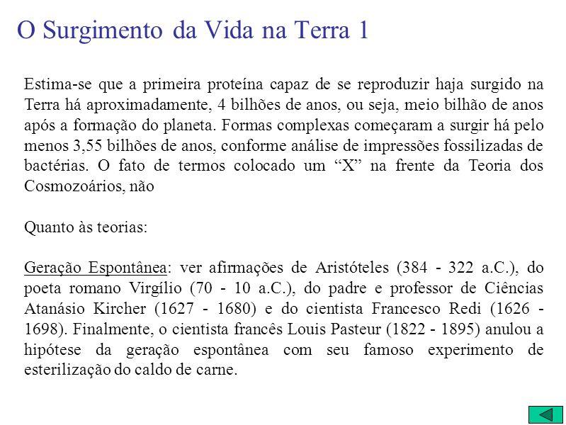 O Surgimento da Vida na Terra TEORIAS: * Geração Espontânea (de Aristóteles até o séc. XIX); * Cosmozoários (séc. XX); * Condições Ambientais Favoráve