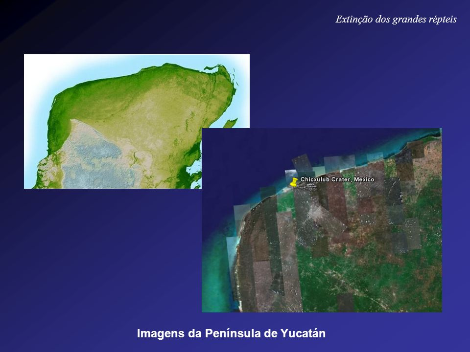 Imagens da Península de Yucatán Extinção dos grandes répteis