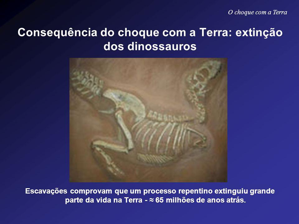 Consequência do choque com a Terra: extinção dos dinossauros Escavações comprovam que um processo repentino extinguiu grande parte da vida na Terra -