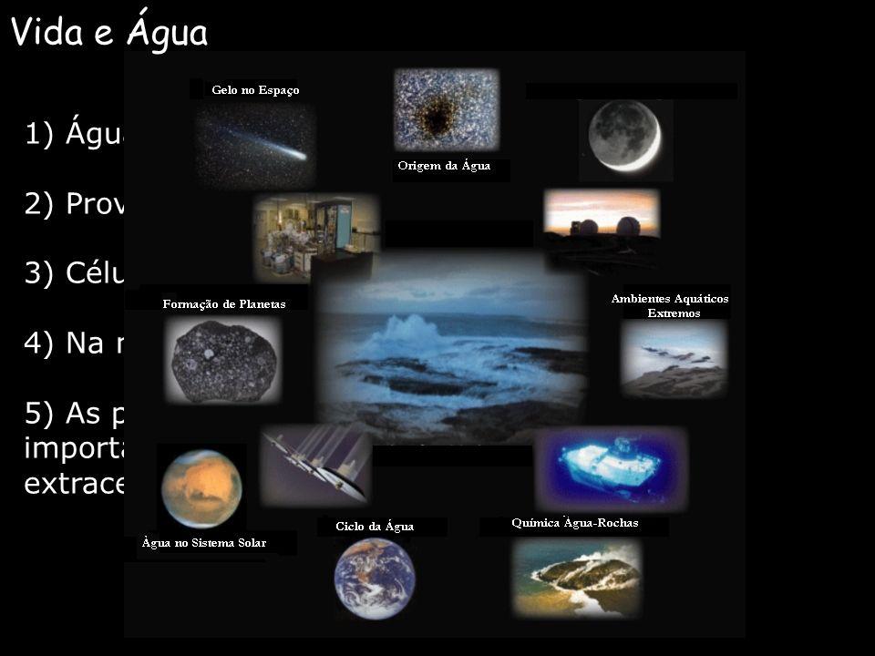 1) Água cobre 3/4 da Terra; 2) Provavelmente a vida evoluiu na água; 3) Células constituem de 70-95% de água; 4) Na natureza, a água existe nos três e