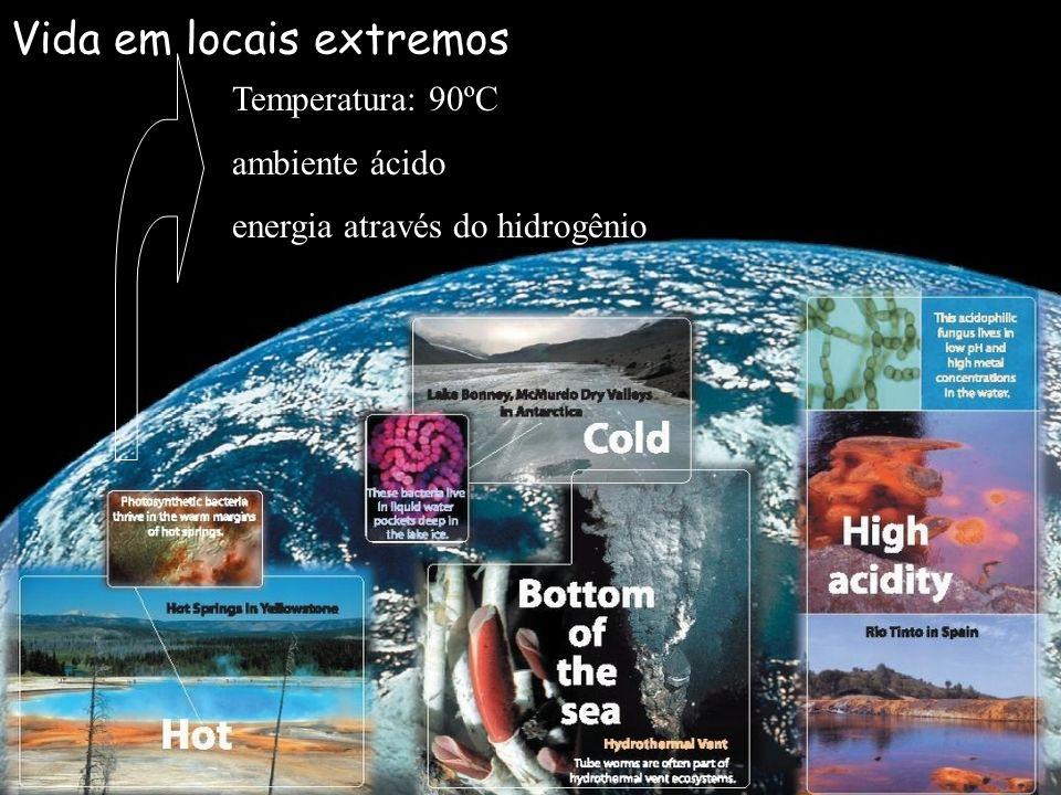 Vida em locais extremos Temperatura: 90ºC ambiente ácido energia através do hidrogênio