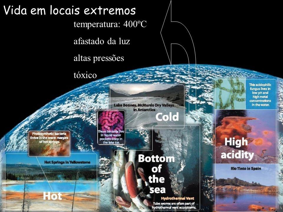 Vida em locais extremos temperatura: 400ºC afastado da luz altas pressões tóxico