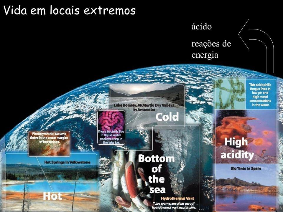 Vida em locais extremos ácido reações de energia