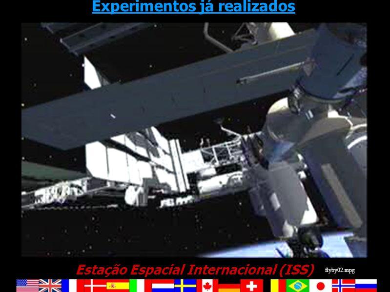 Estação Espacial Internacional (ISS) Experimentos já realizados flyby02.mpg