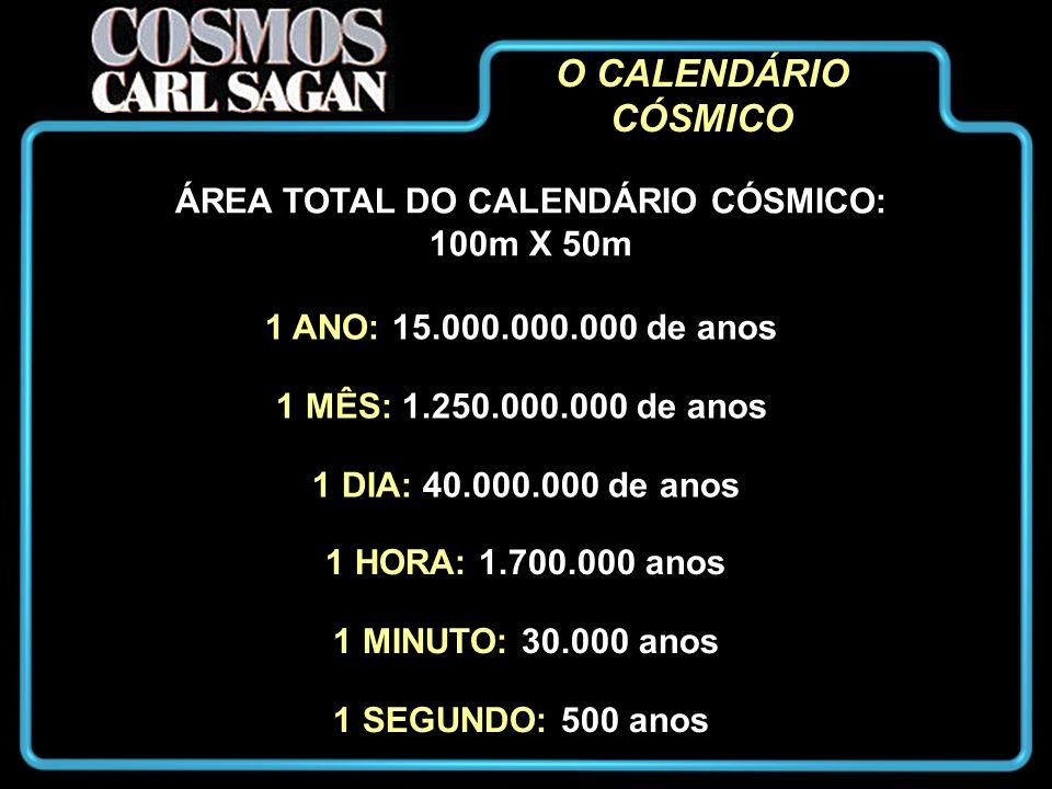 O CALENDÁRIO CÓSMICO ÁREA TOTAL DO CALENDÁRIO CÓSMICO: 100m X 50m 1 ANO: 15.000.000.000 de anos 1 MÊS: 1.250.000.000 de anos 1 DIA: 40.000.000 de anos