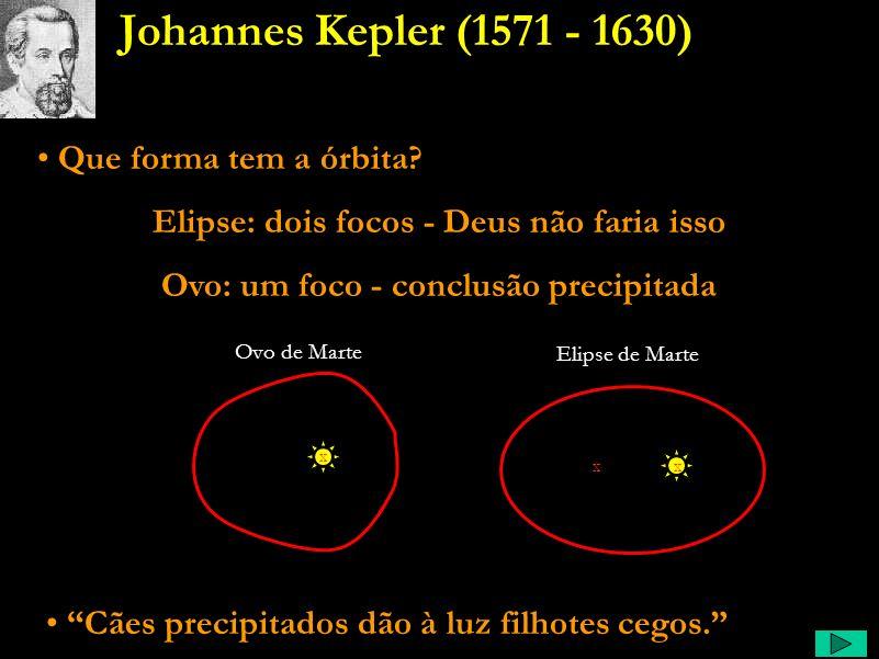 Kepler Comentário: Por fim, parou ele de querer saber apenas a geometria do sistema, mas sim, queria entender o porquê de ele ser assim, o que o suste