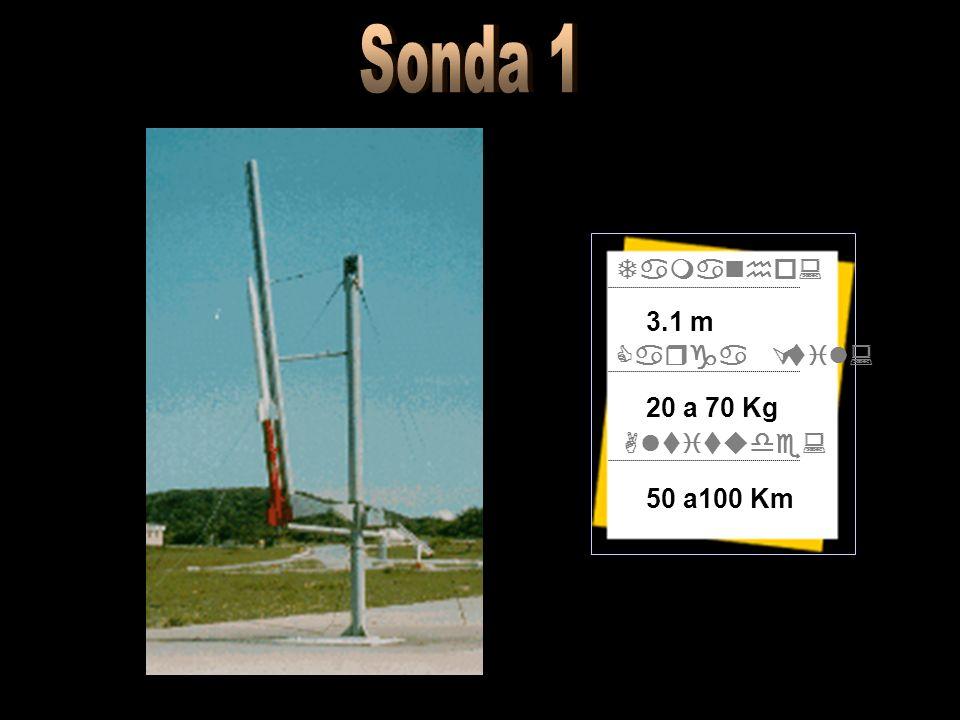 Tamanho: Carga Útil: Altitude: 3.1 m 20 a 70 Kg 50 a100 Km