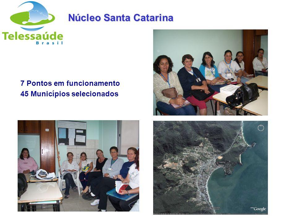 Secretaria de Gestão do Trabalho e da Educação na Saúde 7 Pontos em funcionamento 45 Municípios selecionados Núcleo Santa Catarina
