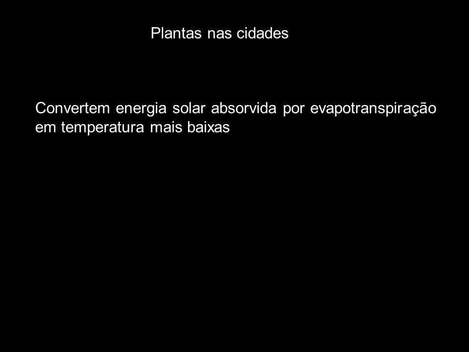Plantas nas cidades Convertem energia solar absorvida por evapotranspiração em temperatura mais baixas