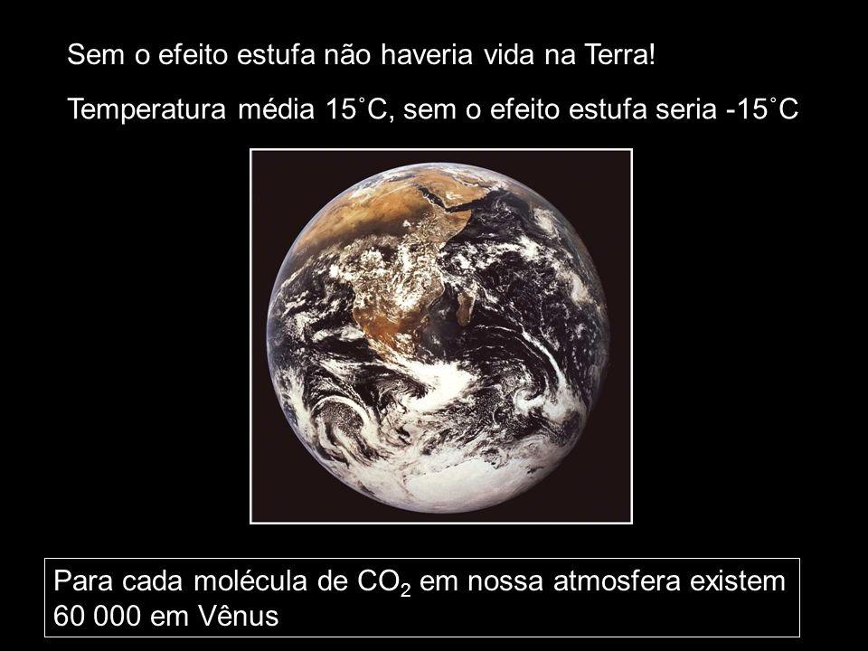 Sem o efeito estufa não haveria vida na Terra! Para cada molécula de CO 2 em nossa atmosfera existem 60 000 em Vênus Temperatura média 15˚C, sem o efe